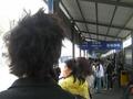前の写真のサムネイル:並んでいるのは楓梅線でした
