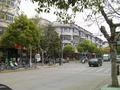 前の写真のサムネイル:楓涇市街地